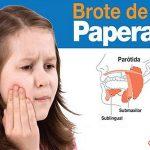 brotedepaperas1