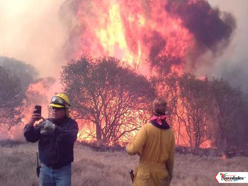 15 mayo novedades incendios mexico